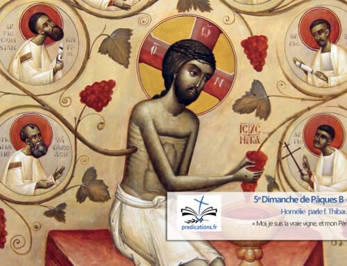 Homélie du 5e Dimanche de Pâques B