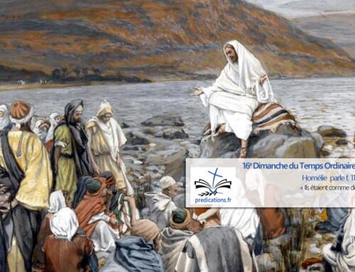 L'homélie pour le 16e dimanche du Temps Ordinaire : repos et évangélisation