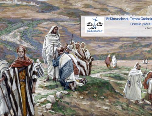 L'homélie pour le 15e dimanche du Temps Ordinaire : une église en croissance